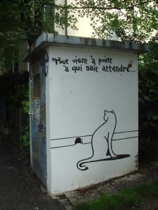 Crets-de-Champel, Genève, photo sur le blog du chat hong-kongais Kojak !